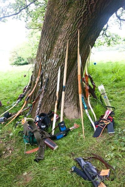 tea-tent-tree-jpg